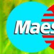 Как взять моментальный займ на карту Маэстро через интернет
